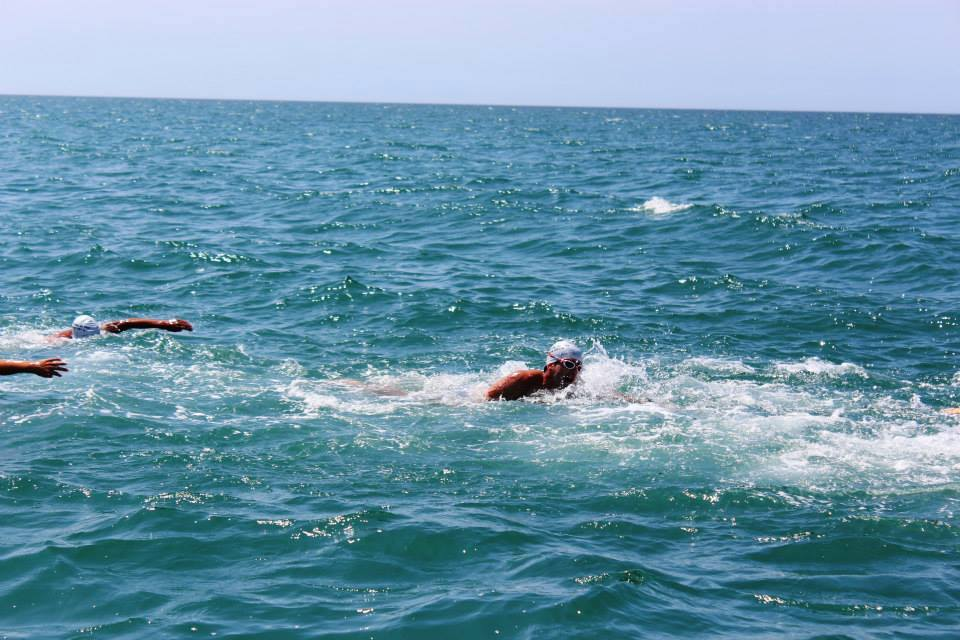 Sighting open water swimming